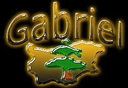 Gabriel bulgarian properties - Whether you are about to make a real estate investments